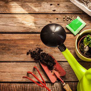 como elegir y aplicar los fertilizantes