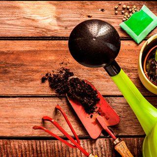 Kit básico de herramientas para un jardín de casa