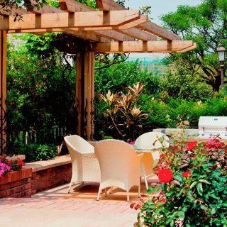 Estas son las 10 mejores plantas para tu jardín