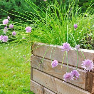 Construye una hermosa maceta de esquina para jardín
