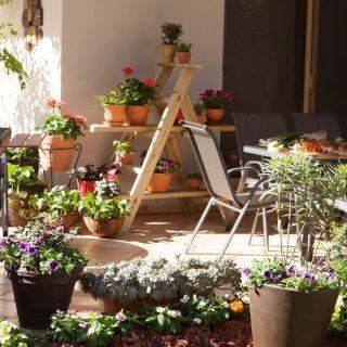 Tras los temporales, replantea el diseño de tu jardín